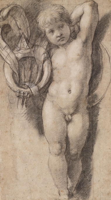 Putto Holding the Medici Ring, c. 1513-14. Black chalk with white heightening, later framing lines in black chalk. 33.8 x 19.3 cm. © Teylers Museum, Haarlem
