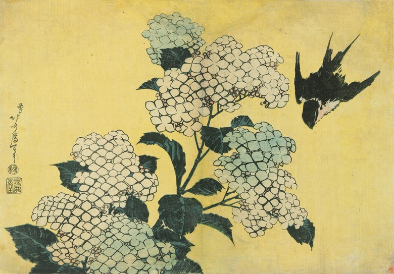 Katsushika Hokusai (1760-1849), Hydrangea and Swallow, circa 1831-32. Horizontal 25.9 x 37.1 cm. Estimate US$9,000-12,000. Offered in Masterpieces of Ukiyo-e A Collection of Japanese Prints on 27 May at Christies Hong Kong