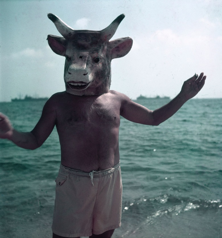 Picasso wearing a bull's head mask intended for bullfighters' training on a beach in Golfe-Juan, Vallauris, France, 1949. Photo Gjon MiliTime and Life PicturesGetty Image © Succession PicassoDACS, London 2019